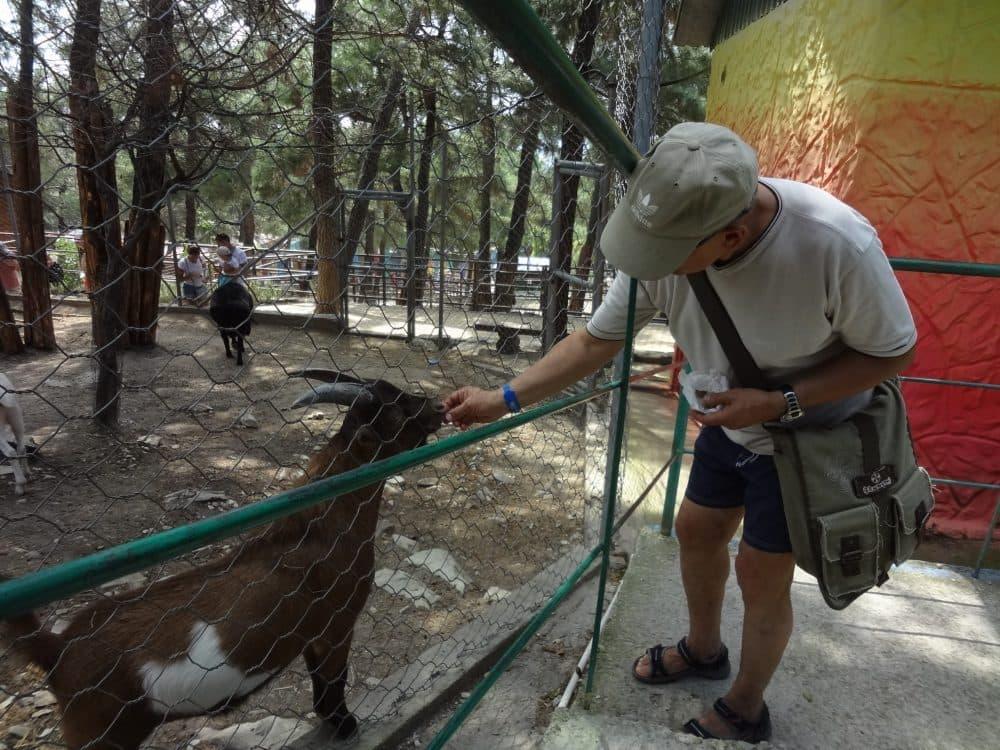 Геленджик сафари-парк