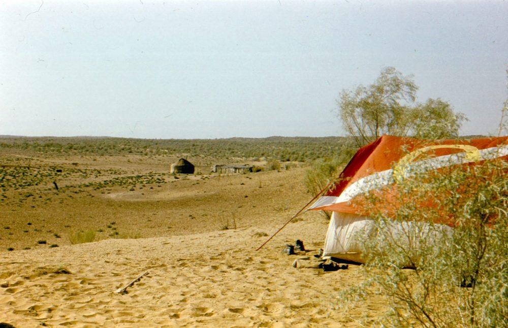 Кызылкум пустыня