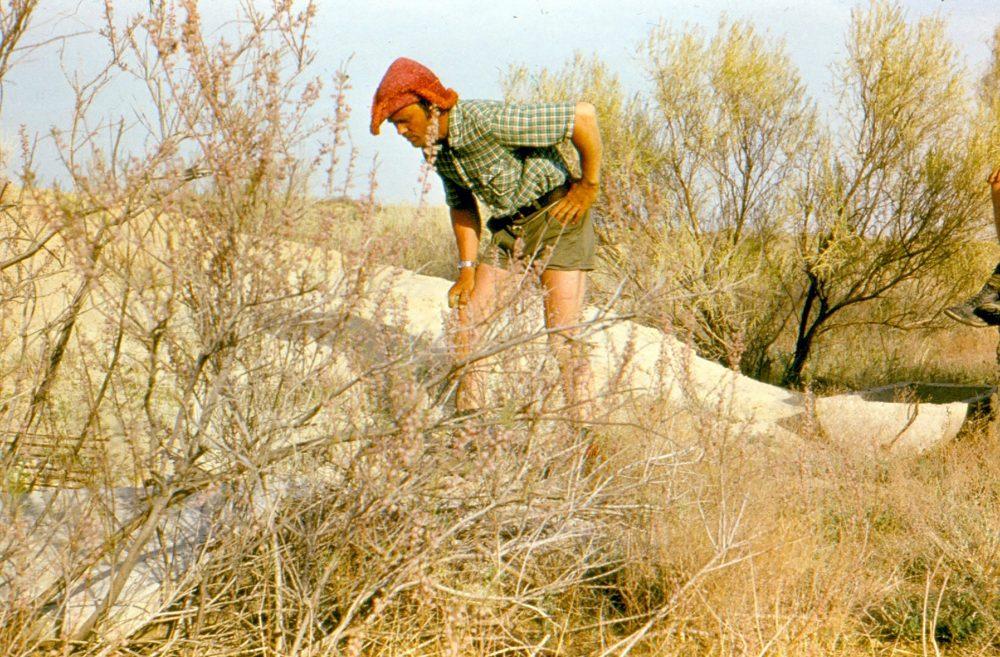 Кызылкум пустыня жажда