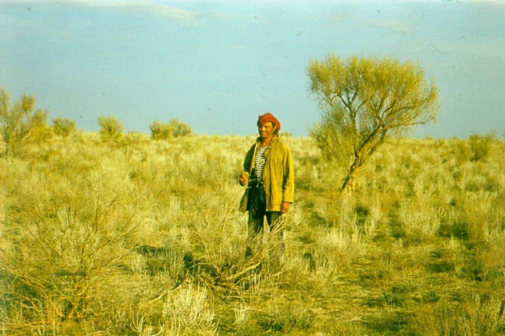 Пустыня Кызылкум фото