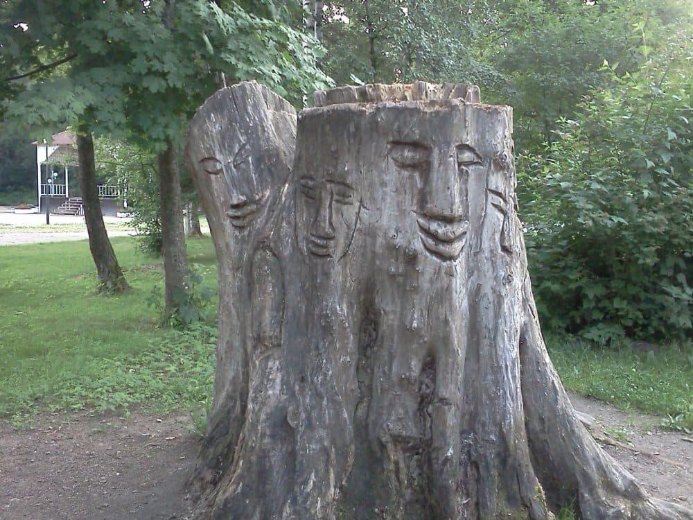 Зеленогорск парк фото