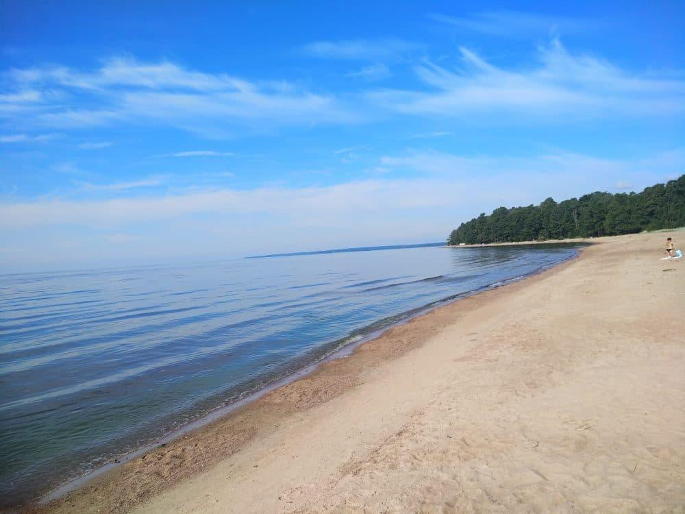 Зеленогорск пляж фото