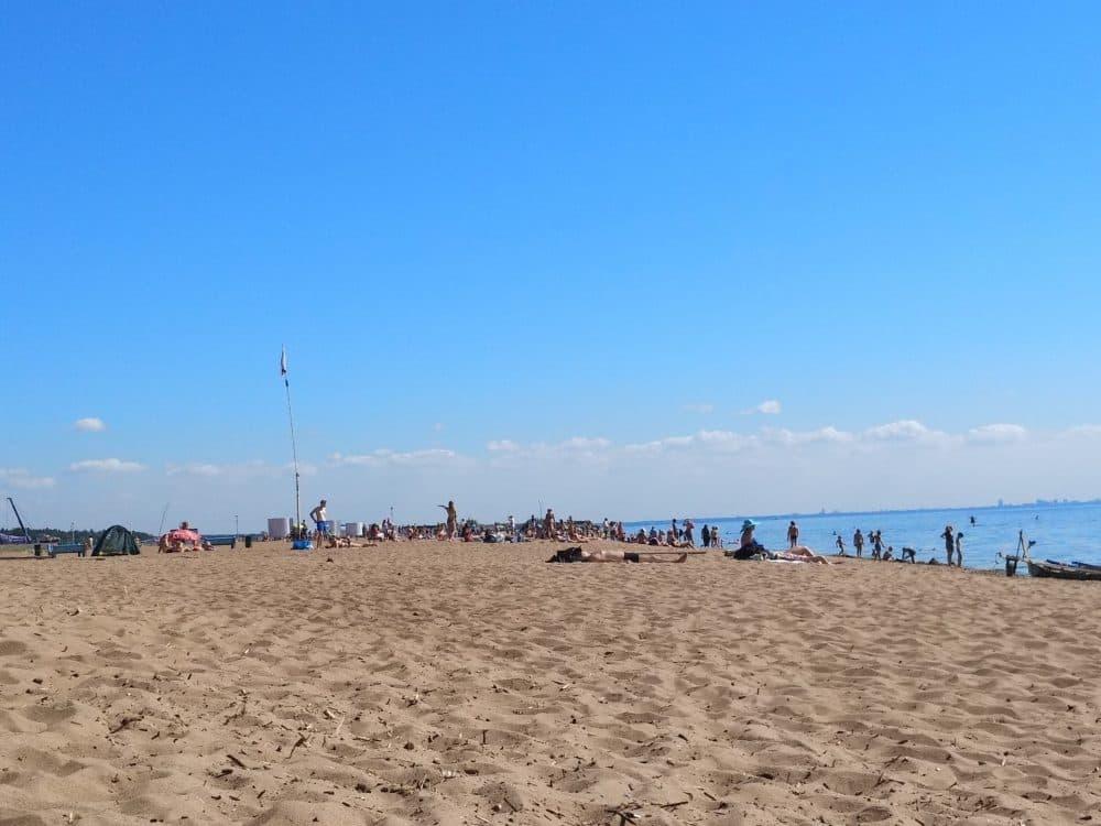 Пляж в Зеленогорске фото