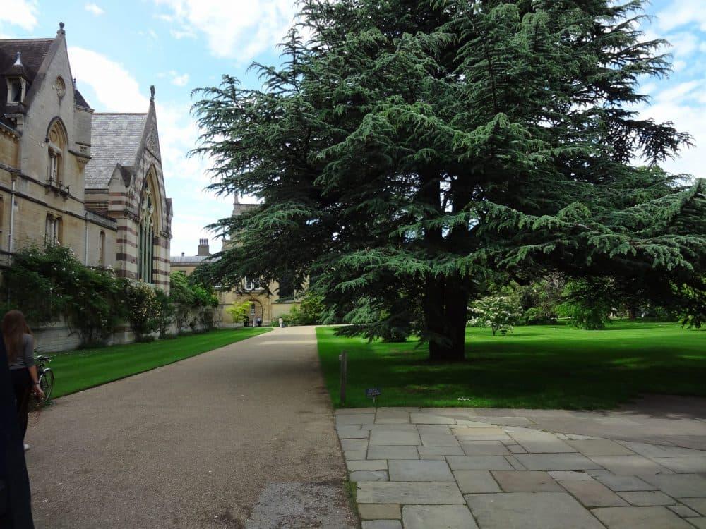Город Оксфорд фото