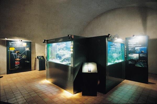 Музей озера Анси
