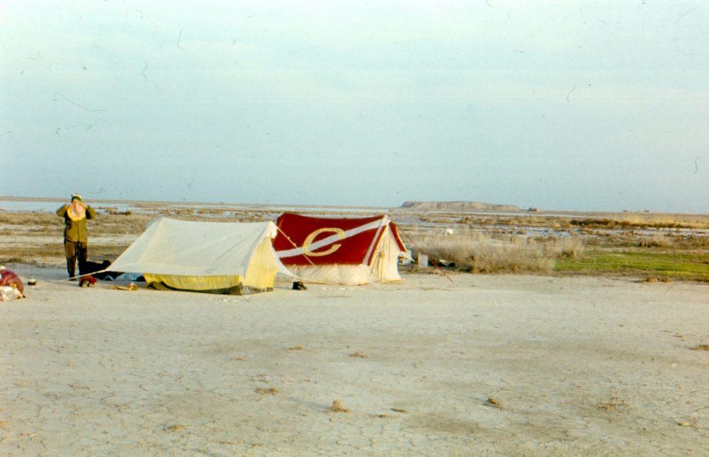 Кызылкум фото пустыни