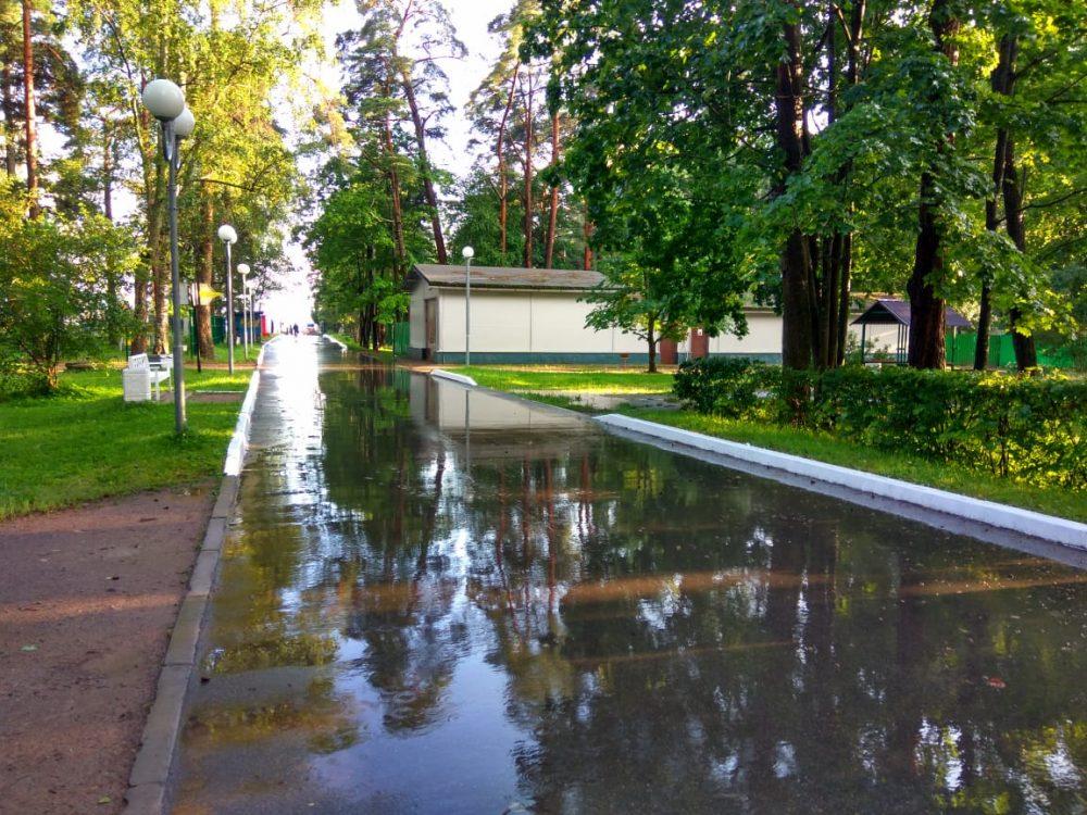 Отдых в Зеленогорске фото