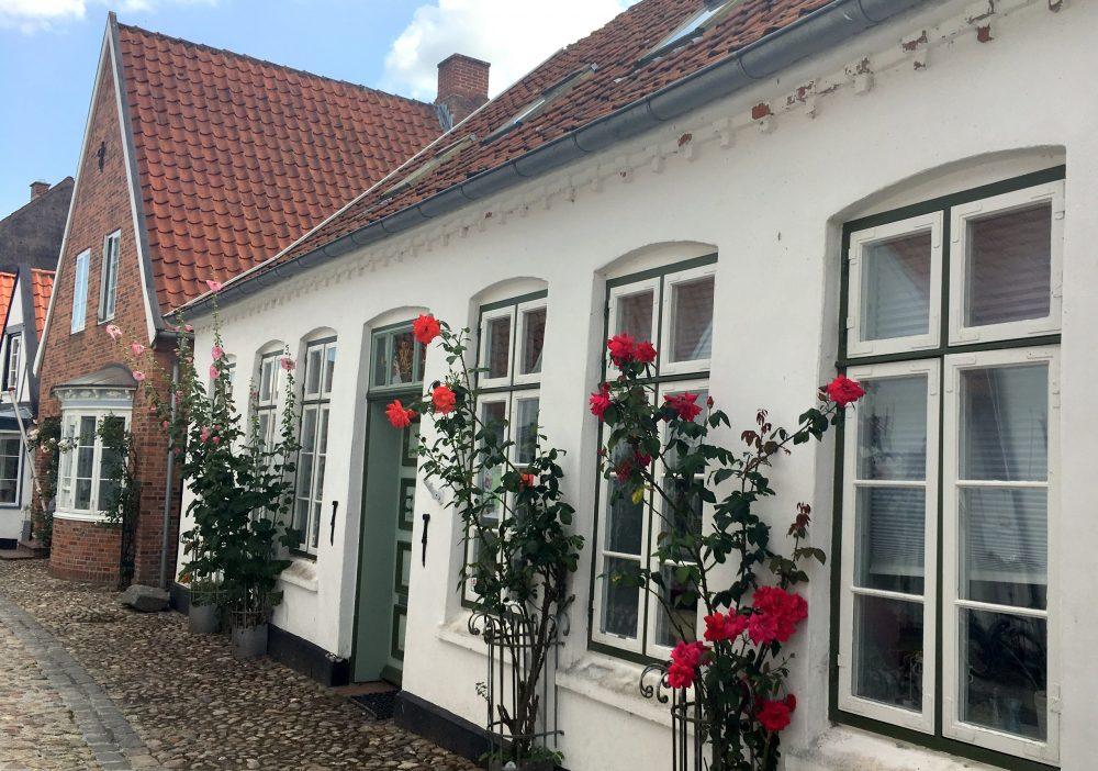 Дания отзыв