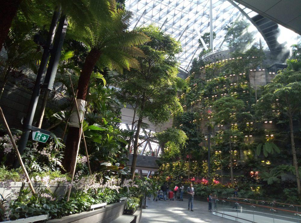 Аэропорт Чанги Сингапур
