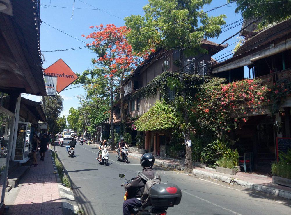 Убуд Бали отзыв
