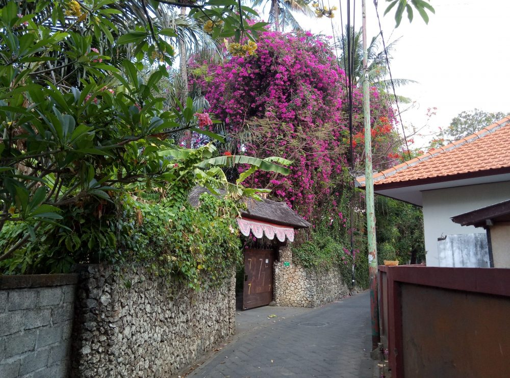 Семиньяк Бали отдых фото