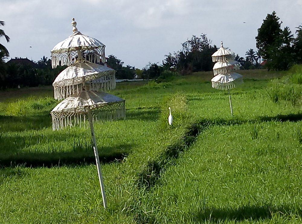 Убуд Бали традиции