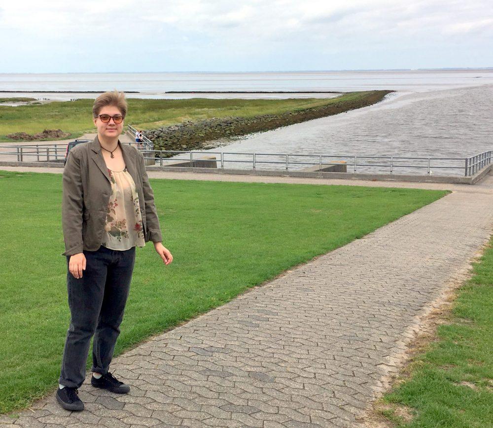 Дания дамба фото