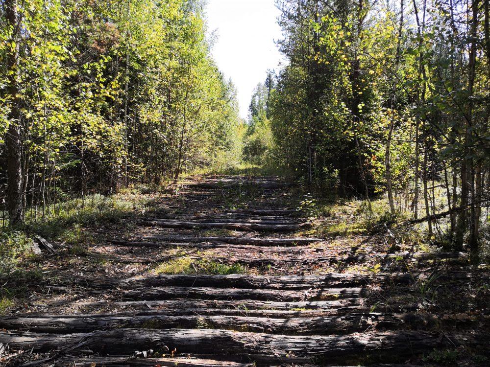 Новгородская область России