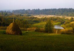 Россия Новгородская область