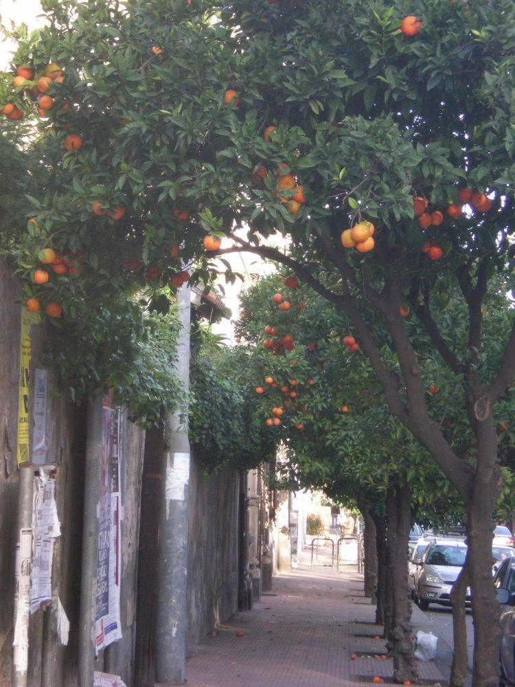 Сицилия зимой