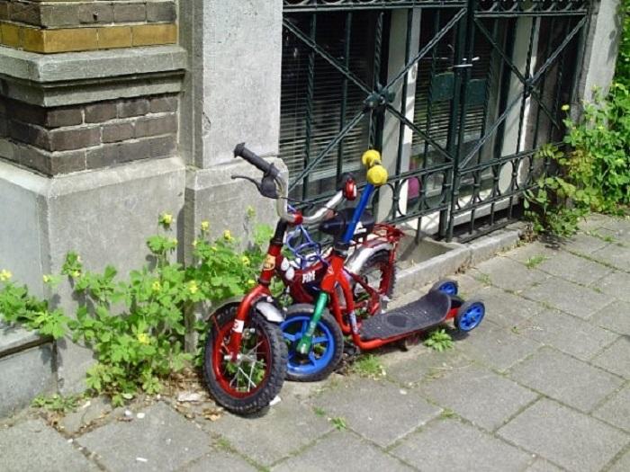 Фото Амстердам