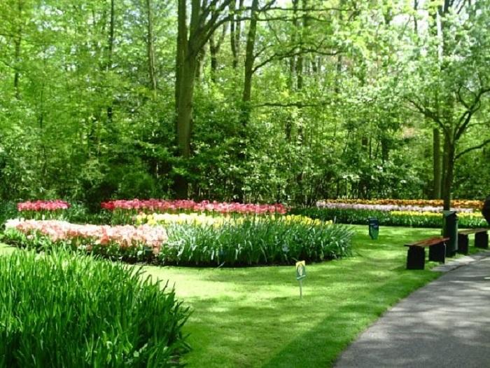Фото парк цветов Голландия