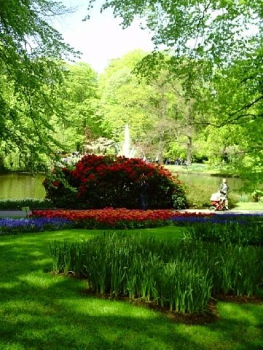 Парк цветов Нидерланды отзыв