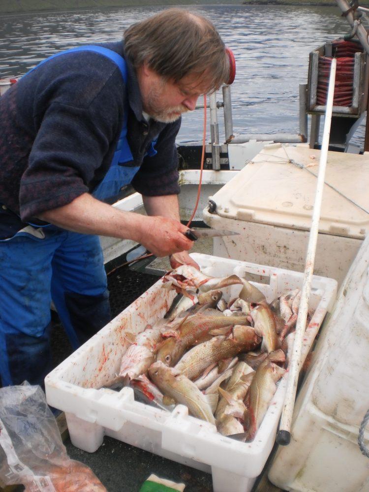 Фареры рыбалка отзывы